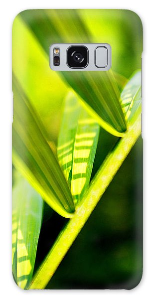 Light On Leaves Galaxy Case