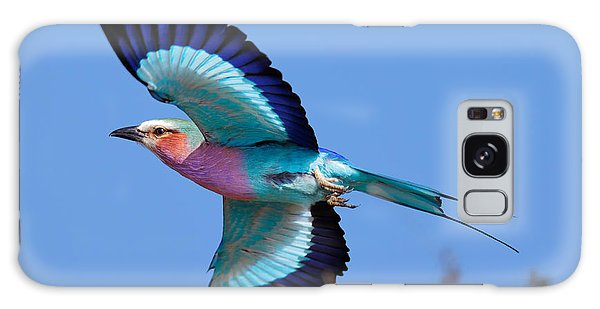 Active Galaxy Case - Lilac-breasted Roller In Flight by Johan Swanepoel