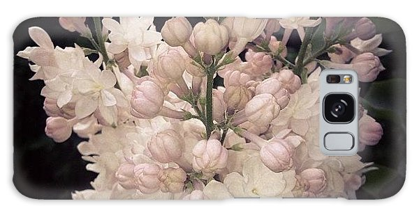Beautiful Galaxy Case - Lilacs Are Blooming by Christy Beckwith