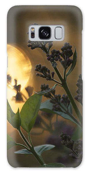 Lilacs At Sunset Galaxy Case by Penny Meyers