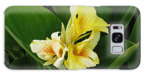 Lilly Of Shreveport Galaxy Case