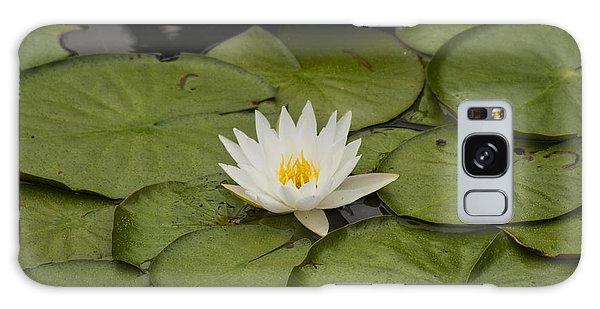 Lily Flower Galaxy Case