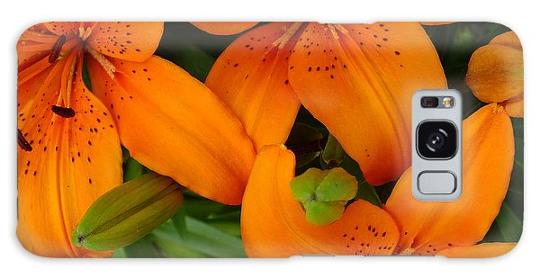 Lily Orange Galaxy Case