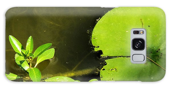 Lily Pad Galaxy Case