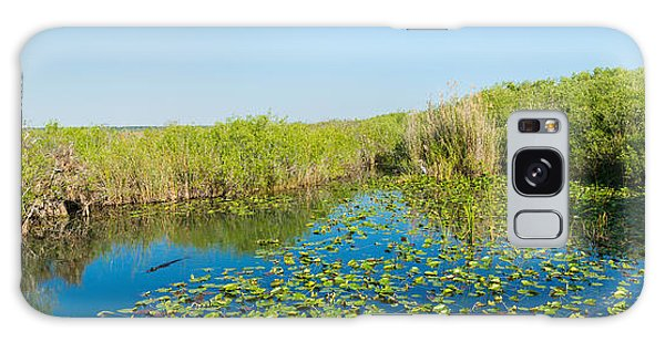 Anhinga Galaxy S8 Case - Lily Pads In The Lake, Anhinga Trail by Panoramic Images