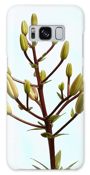 Lily Tree Galaxy Case