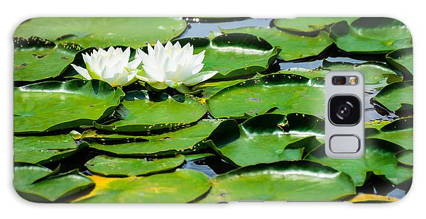 Lily Pads Galaxy Case by Alan Marlowe
