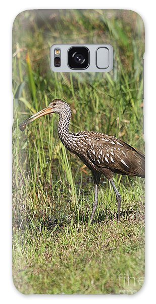 Limpkin With Apple Snail Galaxy Case by Christiane Schulze Art And Photography