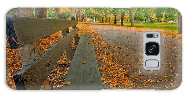 Lincoln Park Bench In Fall Galaxy Case