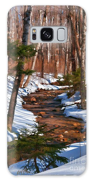 Lincoln Woods Trail Galaxy Case by Sharon Seaward