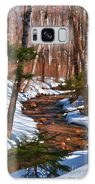 Lincoln Woods Trail Galaxy Case
