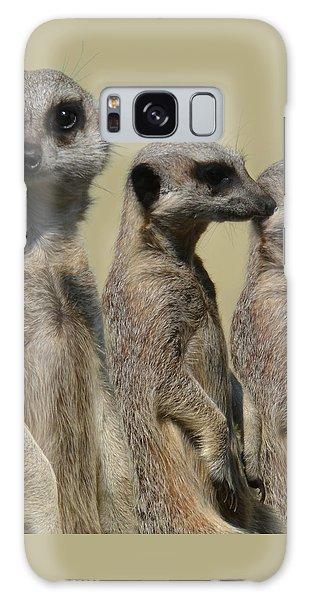 Line Dancing Meerkats Galaxy Case