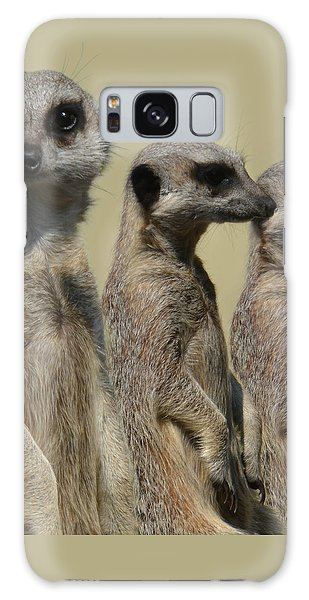 Line Dancing Meerkats Galaxy Case by Paul Davenport