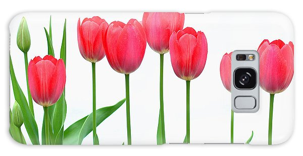 Line Of Tulips Galaxy Case by Steve Augustin