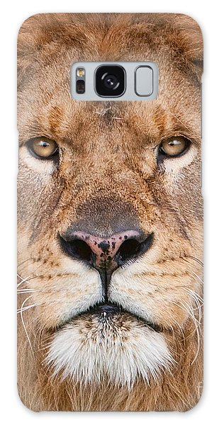 Lion Close Up Galaxy Case by Jerry Fornarotto