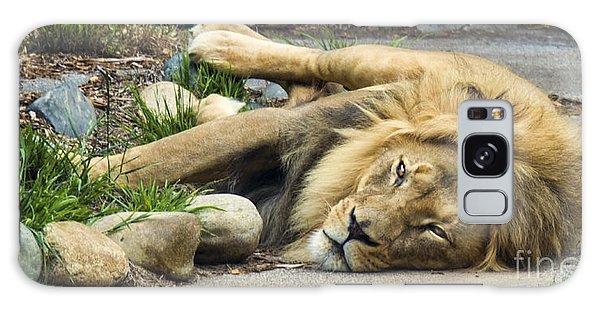 Lion I Galaxy Case by Chuck Kuhn
