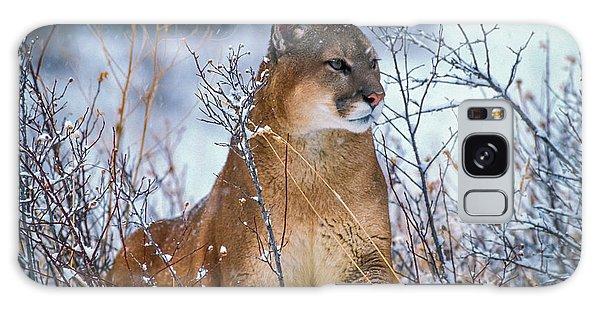 Lion King II Galaxy Case
