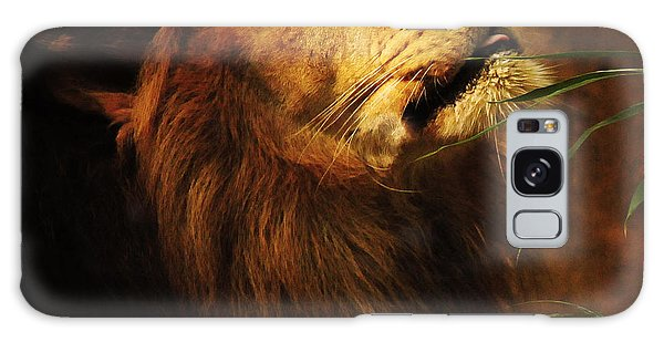 The Lion Of Judah Galaxy Case