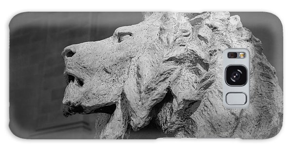 Chicago Art Galaxy Case - Lion Of The Art Institute Chicago B W by Steve Gadomski