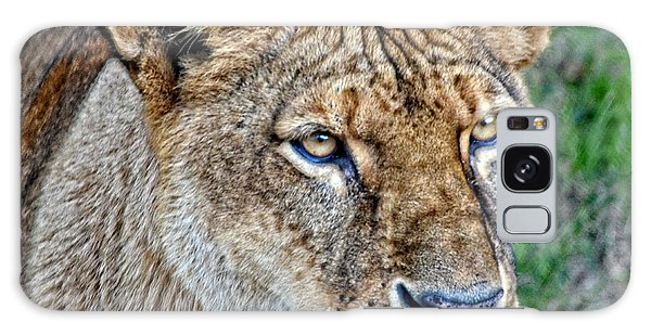 Lioness Deep In Thought Hdr Galaxy Case