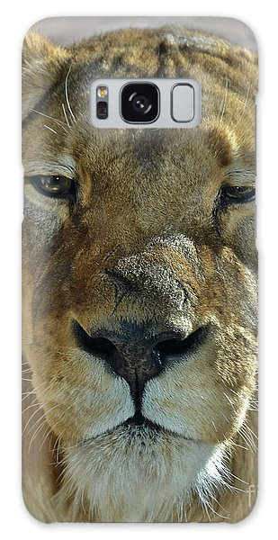 Lioness Portrait Galaxy Case