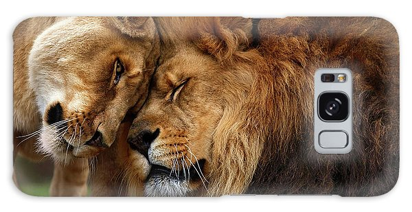 Lions In Love Galaxy Case