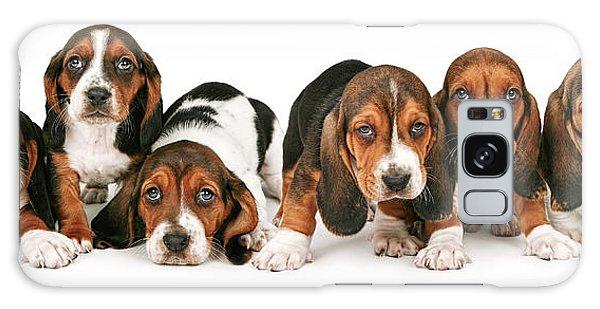 Litter Of Basset Hound Puppies Galaxy Case