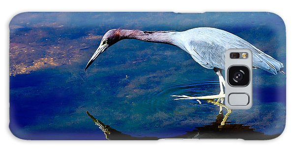 Little Blue Heron Fishing Galaxy Case