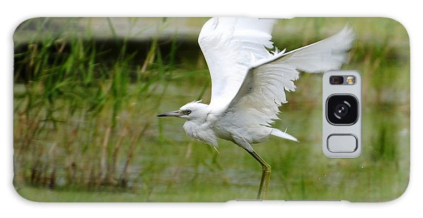 Little Blue Heron In Flight Galaxy Case by Dan Williams