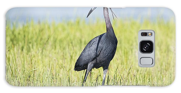 Little Blue Heron In The Marsh Galaxy Case