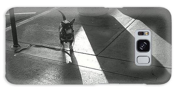 Little Dog Big Shadow Galaxy Case