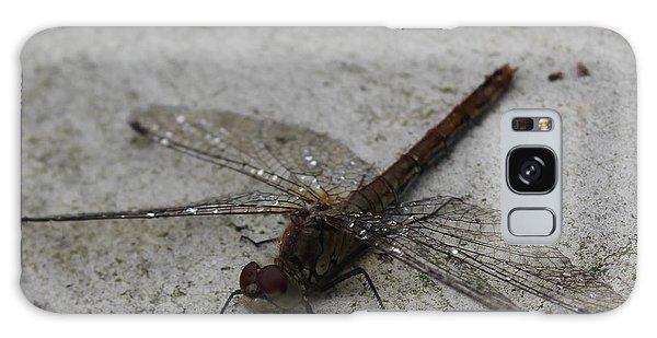 Little Dragonfly Galaxy Case