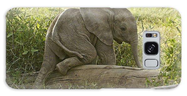 Little Elephant Big Log Galaxy Case