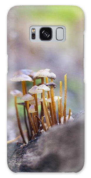 Little Fungi World Galaxy Case