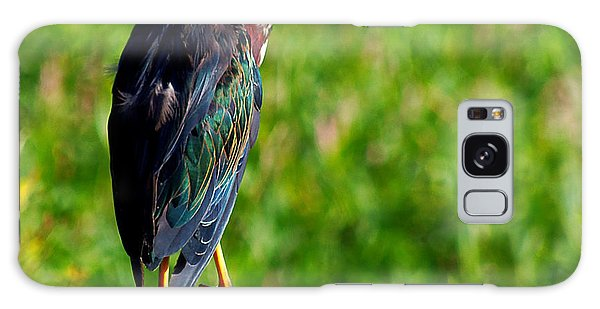 Little Green Heron 002  Galaxy Case