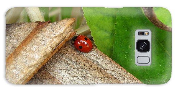 Little Lazy Ladybug Galaxy Case