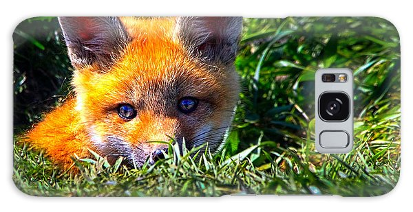 Sly Galaxy Case - Little Red Fox by Bob Orsillo