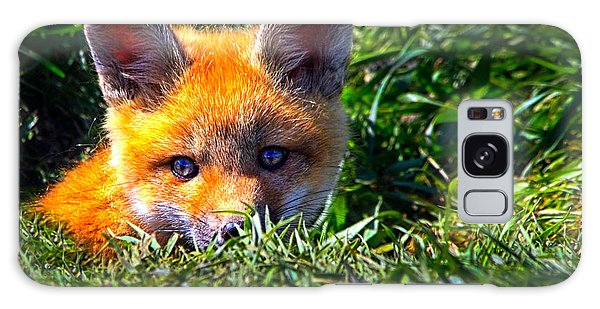 Little Red Fox Galaxy Case by Bob Orsillo