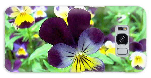 Little Violas Galaxy Case