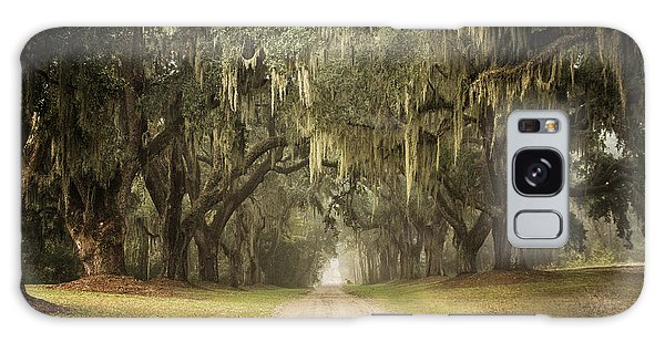 Live Oak Allee' On A Foggy Morn Galaxy Case by Sandra Anderson