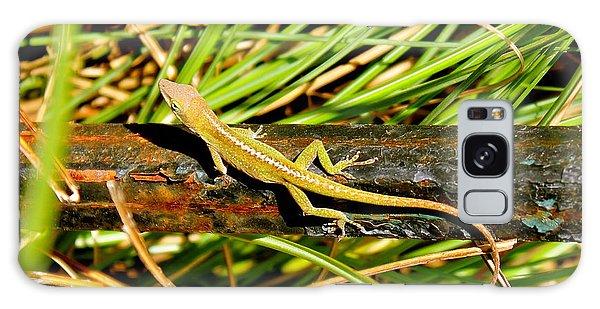 Lizard Galaxy Case