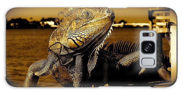 Lizard Sunbathing In Miami II Galaxy Case