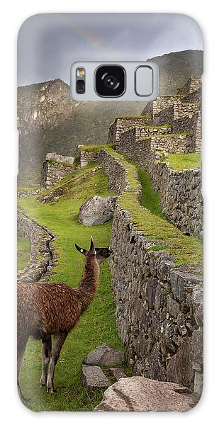 Llama Stands On Agricultural Terraces Galaxy Case
