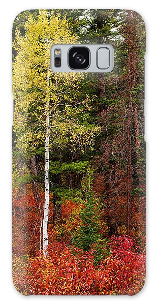 Lone Aspen In Fall Galaxy Case by Chad Dutson