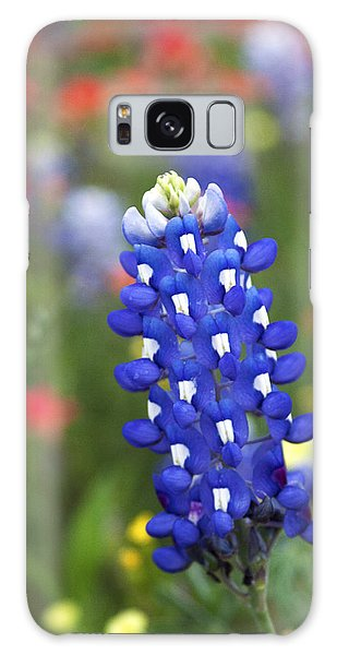 Lone Bluebonnet Galaxy Case
