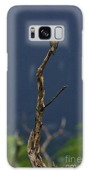 Lone Dove Galaxy Case by Craig Wood