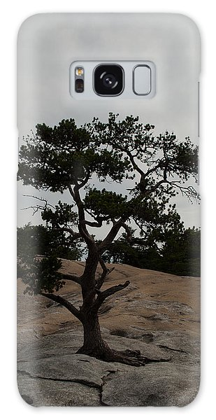 Lone Tree In Stone Mountain State Park North Carolina Galaxy Case