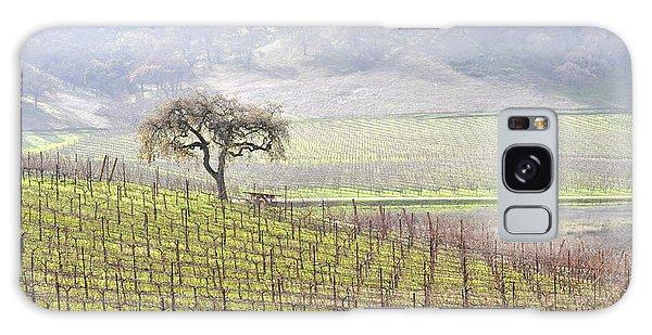Lone Tree In The Vineyard Galaxy Case by AJ  Schibig