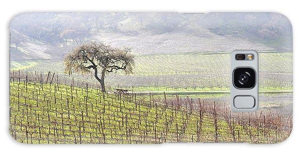 Lone Tree In The Vineyard Galaxy Case