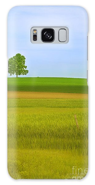 Lone Tree Galaxy Case